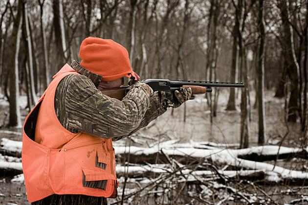 Winter Pheasant hunting during a snowstorm